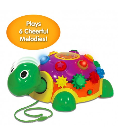 Funtime Activity Turtle